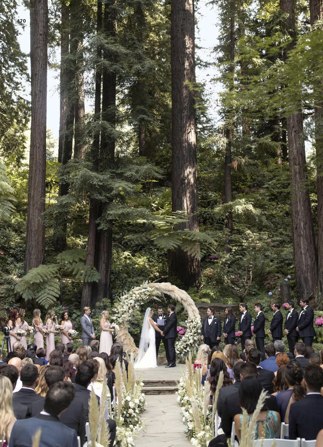 wedding-ashley-greene